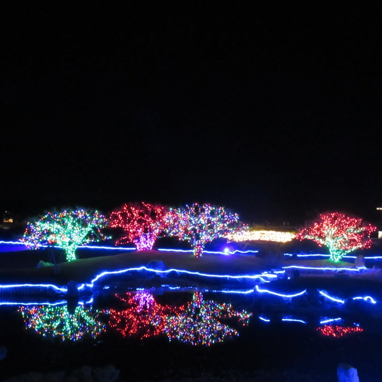 Winter Light Festival Update -Go to Admission and Hours
