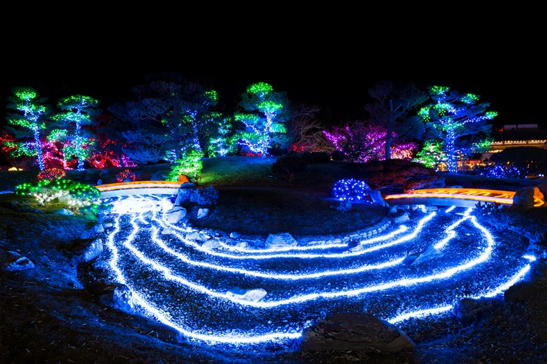 The Winter Lights Festival runs on select nights until February 2nd (6:30pm to 9:30). View the Garden's Events and Activities Calendar for a complete list of festival dates.